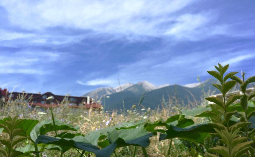 Правителственото решение за Пирин е незаконосъобразно